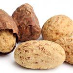 La Noix de Kola Riche en caféine et en théobromine, ce fruit utilisé dans Yoo slim est une véritable source d'énergies